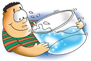 El agua y el rendimiento cognitivo