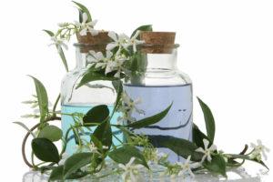 Jasmine-Aromatherapy625