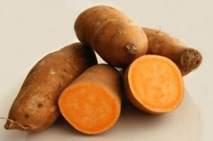 Sweet-Potato--e1353785571309