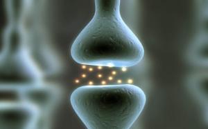h1-synapse-640x400