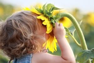 air_sunflower-kid