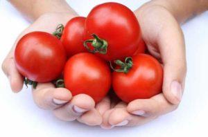 tomata2