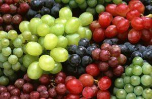 dieta-uva-jpg